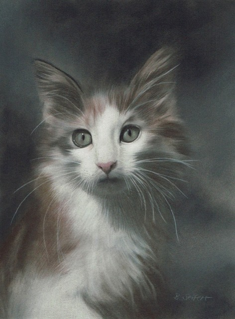Brita Seifert Amazing Pastel/Colored pencil on paper