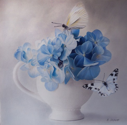 Brita Seifert Hortentia  Pastel/Colored pencil on paper