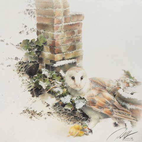 Paul Christiaan Bos Owlery X: Coppernickle bij Sneeuw  Fine Art Print, (oplage 25)