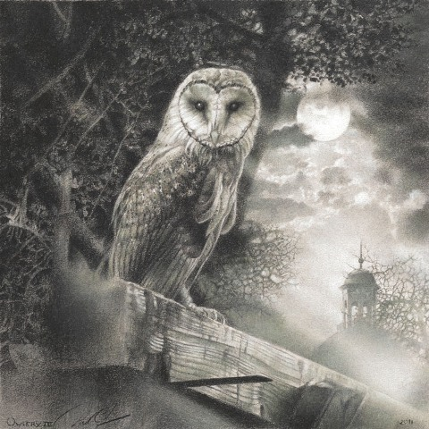 Paul Christiaan Bos Owlery   III: Coppernickle   Fine Art Print, (oplage 100)