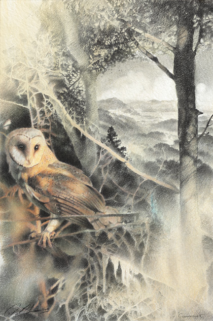 Paul Christiaan Bos Owlery II: Coppernickle  Fine Art Print, (oplage 100)